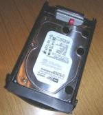 SATA drive installed in removable caddy